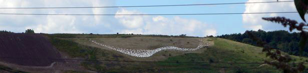 Elland Landfill Starlings Murmuration by Jane Revitt and Kedel Limited