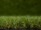 Artificial Park Grass | 40mm Pile Depth | 26.99 per sq metre