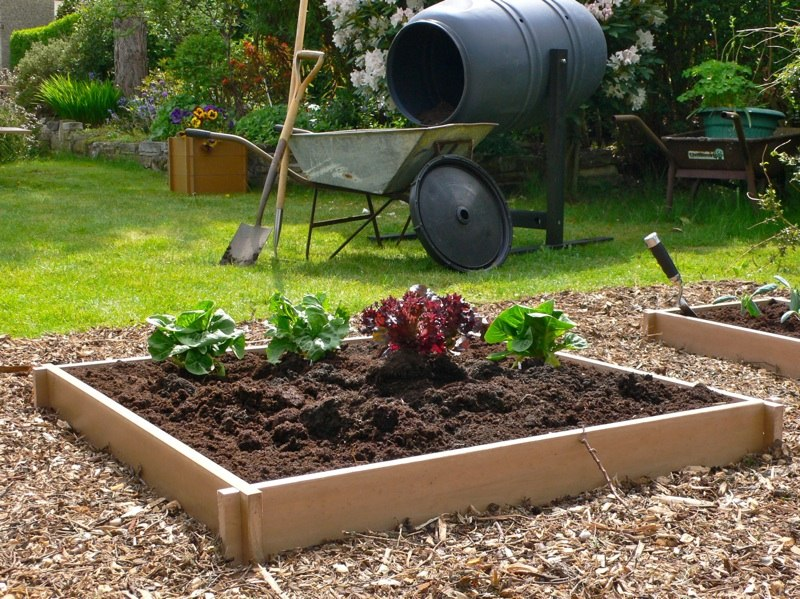 Raised beds create alot of garden from a little space